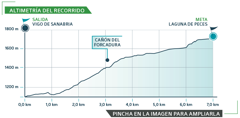 MASA-2019 etapa 1 - gráfica