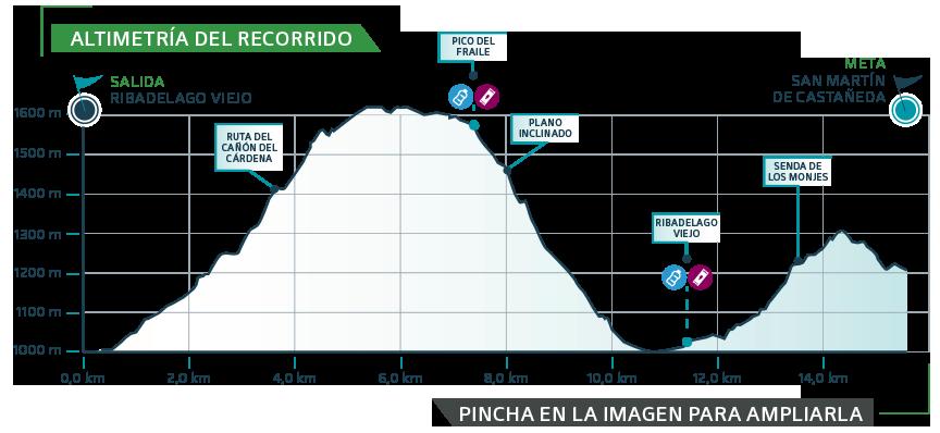MASA-2019 etapa 3 - gráfica